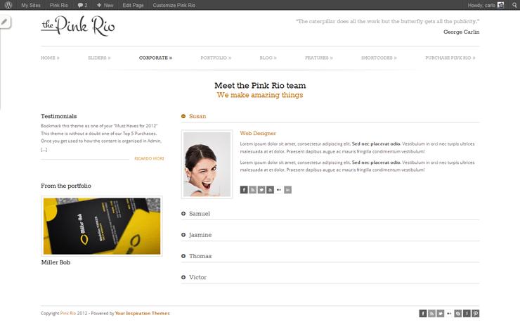 PinkRio Tema WordPress FREE minimal e responsive 25